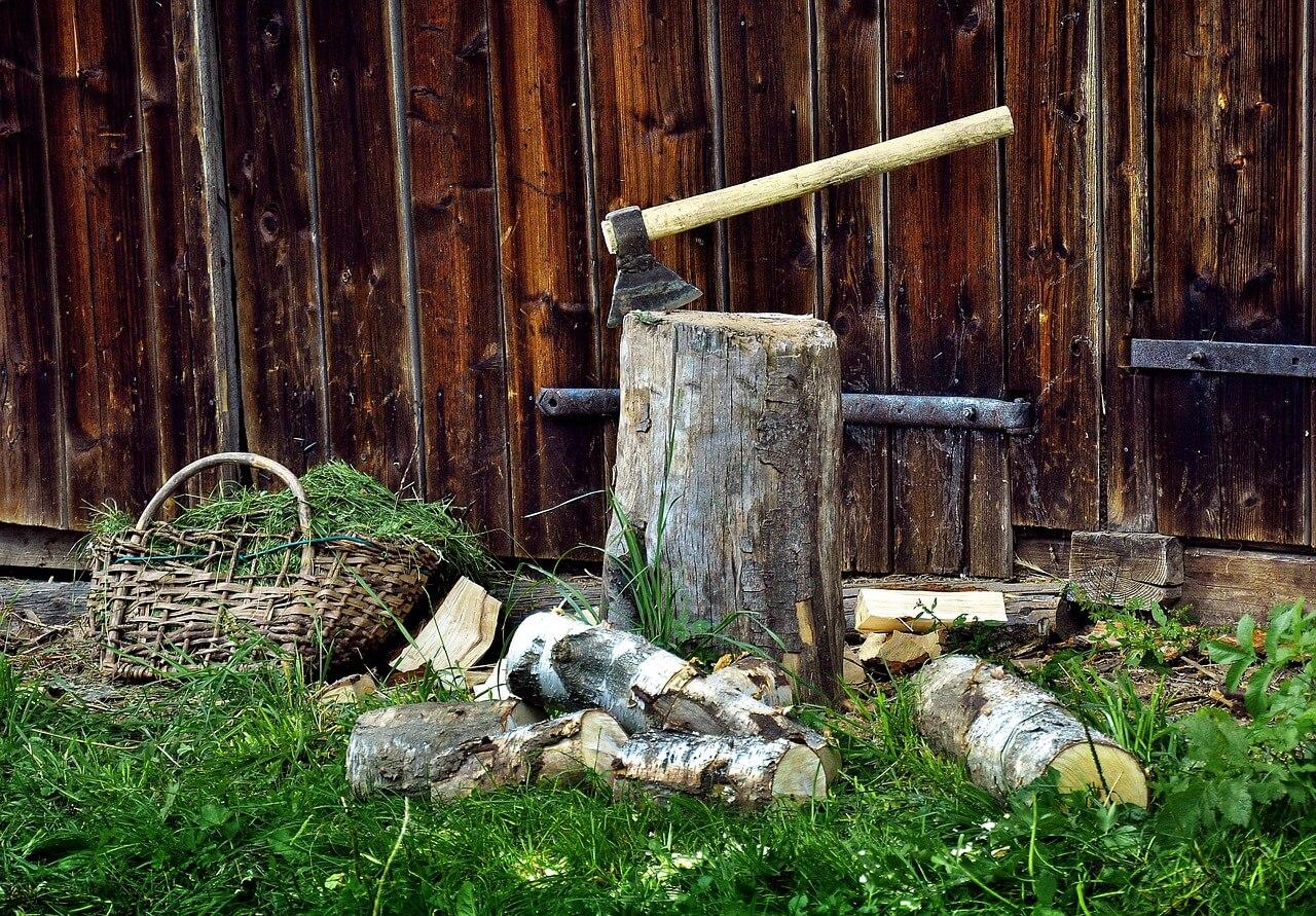 Iz lesa bi lahko pridobivali tudi sintetična goriva