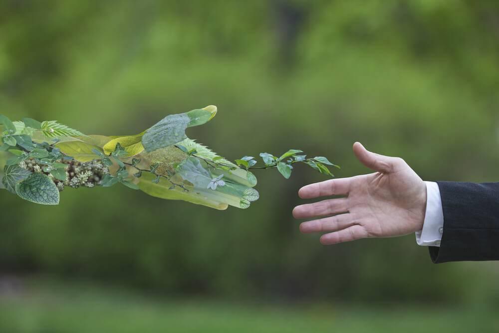 Naložbeni načrt za prehod na zeleno gospodarstvo