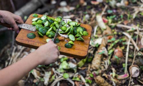12 stvari, ki jih ne bi smeli nikoli vreči na kompost